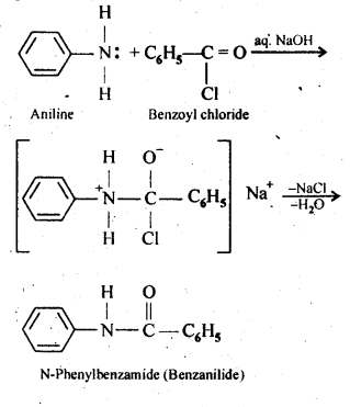 ncert-solutions-for-class-12-chemistry-amines-6