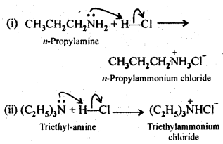 ncert-solutions-for-class-12-chemistry-amines-4