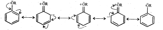 ncert-solutions-for-class-12-chemistry-alcohols-phenols-and-ether-38