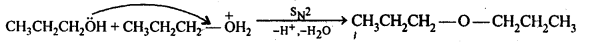 ncert-solutions-for-class-12-chemistry-alcohols-phenols-and-ether-34