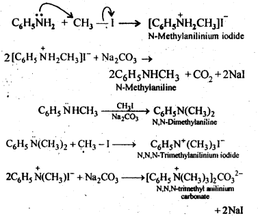 ncert-solutions-for-class-12-chemistry-amines-5