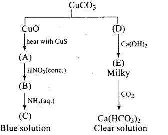 ncert-exemplar-problems-class-12-chemistry-d-f-block-elements-31