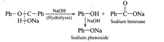 ncert-exemplar-problems-class-12-chemistry-aldehydes-ketones-and-carboxylic-acids-23