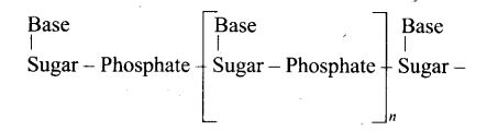 ncert-exemplar-problems-class-12-chemistry-biomolecules-50