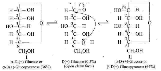 ncert-exemplar-problems-class-12-chemistry-biomolecules-41