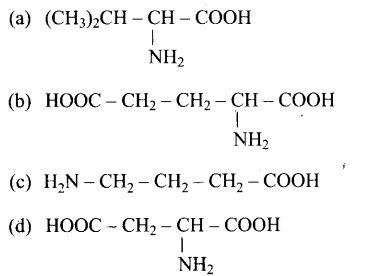 ncert-exemplar-problems-class-12-chemistry-biomolecules-13