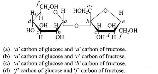 ncert-exemplar-problems-class-12-chemistry-biomolecules-11