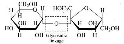 ncert-exemplar-problems-class-12-chemistry-biomolecules-6