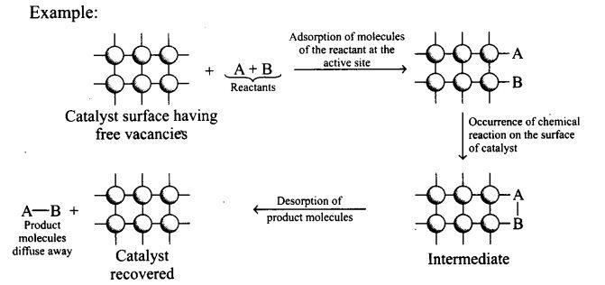 ncert-exemplar-problems-class-12-chemistry-surface-chemistry-25