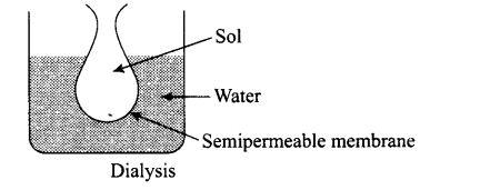 ncert-exemplar-problems-class-12-chemistry-surface-chemistry-23