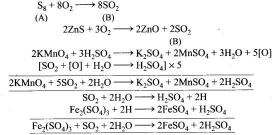 ncert-exemplar-problems-class-12-chemistry-p-block-elements-55