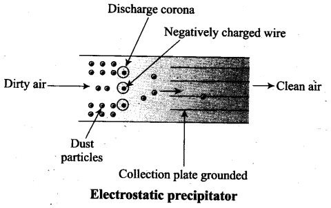 ncert-exemplar-problems-class-12-biology-environmental-issues-7