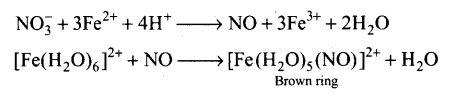 ncert-exemplar-problems-class-12-chemistry-p-block-elements-11