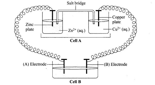 ncert-exemplar-problems-class-12-chemistry-electrochemistry-55
