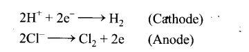ncert-exemplar-problems-class-12-chemistry-electrochemistry-42