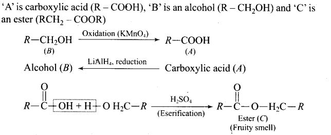 ncert-exemplar-problems-class-12-chemistry-aldehydes-ketones-and-carboxylic-acids-38