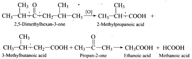ncert-exemplar-problems-class-12-chemistry-aldehydes-ketones-and-carboxylic-acids-36