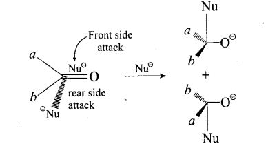 ncert-exemplar-problems-class-12-chemistry-aldehydes-ketones-and-carboxylic-acids-29