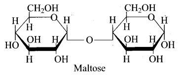 ncert-exemplar-problems-class-12-chemistry-biomolecules-40