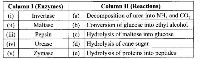 ncert-exemplar-problems-class-12-chemistry-biomolecules-38