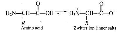ncert-exemplar-problems-class-12-chemistry-biomolecules-29