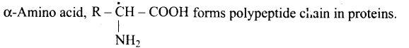 ncert-exemplar-problems-class-12-chemistry-biomolecules-24