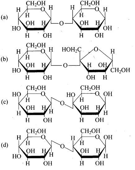 ncert-exemplar-problems-class-12-chemistry-biomolecules-5