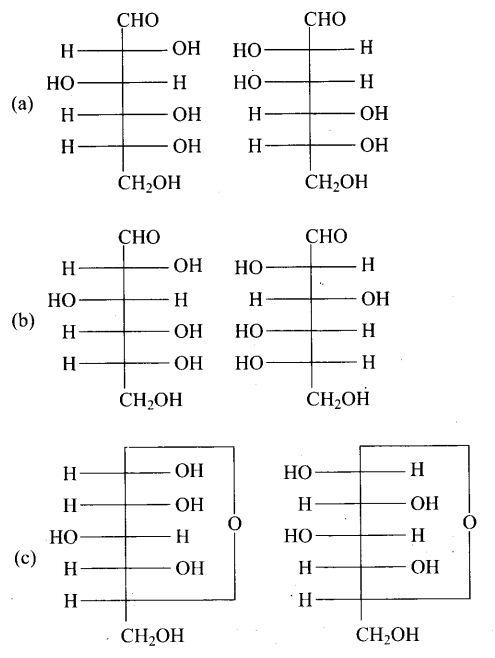 ncert-exemplar-problems-class-12-chemistry-biomolecules-3