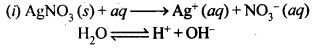 ncert-solutions-for-class-12-chemistry-electrochemistry-24