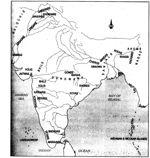 ncert-solutions-for-class-7-history-social-science-chapter-7-tribes-nomads-and-settled-communities-10