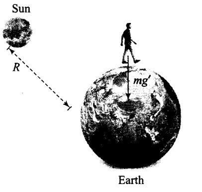 ncert-exemplar-problems-class-11-physics-chapter-7-gravitation-12